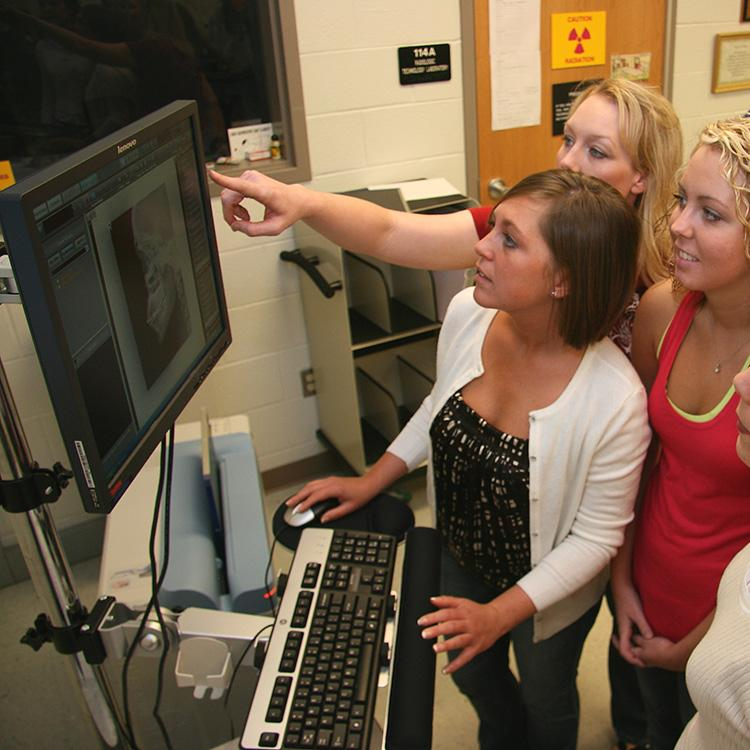 students looking at x-rays