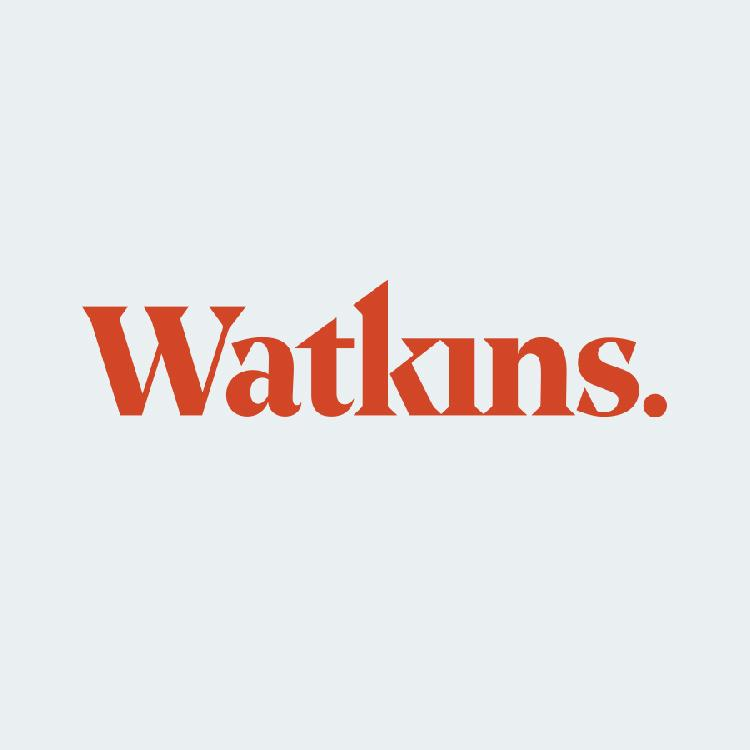 Watkins College of Art - Bachelor of Fine Arts